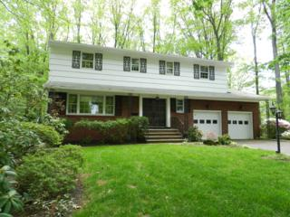 20  Ramsgate Rd  , Cranford Twp., NJ 07016 (MLS #3150645) :: The Dekanski Home Selling Team