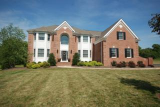 3  Freeman Ln  , Readington Twp., NJ 08889 (MLS #3166408) :: The Dekanski Home Selling Team