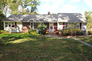 5  Harrison Dr  , Berkeley Heights Twp., NJ 07922 (MLS #3176758) :: The Dekanski Home Selling Team