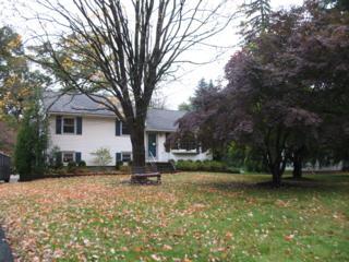 183  Cedar Knolls Rd  , Hanover Twp., NJ 07981 (MLS #3179440) :: The Sue Adler Team