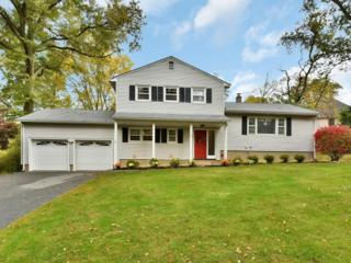 73  Sandra Lane  , Wayne Twp., NJ 07470 (MLS #3180121) :: The Dekanski Home Selling Team