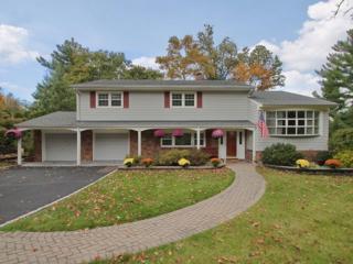 34  Chestnut Hill Dr  , Berkeley Heights Twp., NJ 07974 (MLS #3180129) :: The Dekanski Home Selling Team