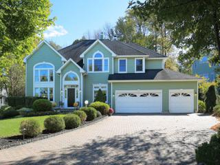 17  Whitetail Ln  , Bernards Twp., NJ 07920 (MLS #3180352) :: The Dekanski Home Selling Team