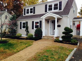 1  Alan Ct  , Clark Twp., NJ 07066 (MLS #3184088) :: The Dekanski Home Selling Team