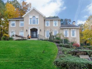 4  Michele Ct  , Wayne Twp., NJ 07470 (MLS #3184668) :: The Dekanski Home Selling Team