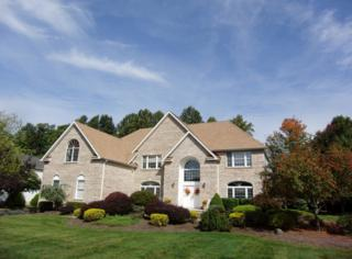 11  Barbara Dr  , Randolph Twp., NJ 07869 (MLS #3185367) :: The Dekanski Home Selling Team