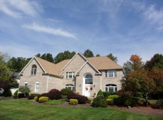 11  Barbara Dr  , Randolph Twp., NJ 07869 (MLS #3185367) :: The Dekanski Home Selling Team