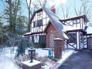 29  Greaves Pl  , Cranford Twp., NJ 07016 (MLS #3191202) :: The Dekanski Home Selling Team