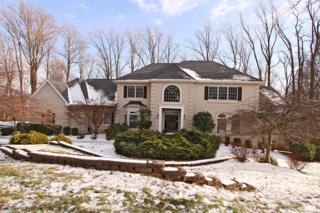 17  Forestdale Dr  , Readington Twp., NJ 08889 (MLS #3193517) :: The Dekanski Home Selling Team
