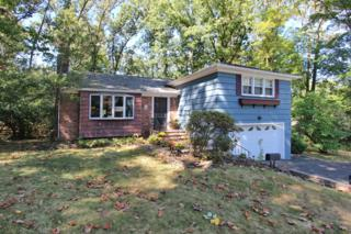 511  Snyder Ave  , Berkeley Heights Twp., NJ 07922 (MLS #3193531) :: The Dekanski Home Selling Team