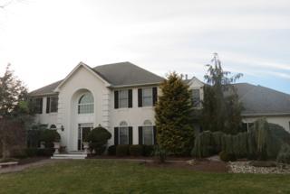 11  Emily Ct  , West Windsor Twp., NJ 08550 (MLS #3193964) :: The Dekanski Home Selling Team