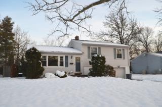 62  Glenwood Rd  , Fanwood Boro, NJ 07023 (MLS #3196640) :: The Dekanski Home Selling Team