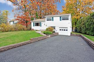 9  Rainier Rd  , Fanwood Boro, NJ 07023 (MLS #3198336) :: The Dekanski Home Selling Team