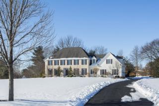 7  Moores Grove Ct  , Montgomery Twp., NJ 08558 (MLS #3200461) :: The Dekanski Home Selling Team
