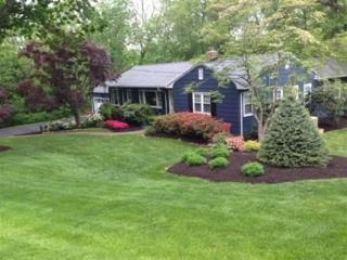 2  Willow Way  , Chatham Twp., NJ 07928 (MLS #3200587) :: The Dekanski Home Selling Team