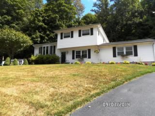 19  Dell Rd  , Stanhope Boro, NJ 07874 (MLS #3201213) :: The Dekanski Home Selling Team