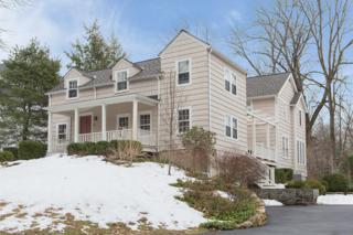 20  Spice Hill Rd  , Berkeley Heights Twp., NJ 07922 (MLS #3205508) :: The Dekanski Home Selling Team