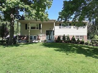 36  Putnam Ave  , Berkeley Heights Twp., NJ 07922 (MLS #3206257) :: The Dekanski Home Selling Team