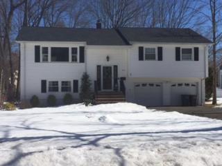 252  Chaucer Dr  , Berkeley Heights Twp., NJ 07922 (MLS #3206334) :: The Dekanski Home Selling Team