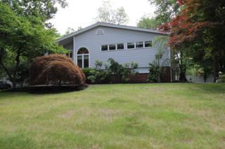 292  Park Ave  , Berkeley Heights Twp., NJ 07922 (MLS #3206893) :: The Dekanski Home Selling Team