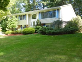 15  Old Mill Dr  , Denville Twp., NJ 07834 (MLS #3206910) :: RE/MAX First Choice Realtors