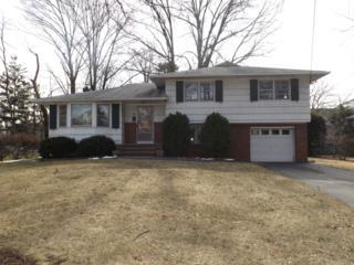 10  Pleasant Ave  , Fanwood Boro, NJ 07023 (MLS #3207272) :: The Dekanski Home Selling Team