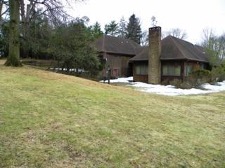 114  Great Hills Rd  , Millburn Twp., NJ 07078 (MLS #3207938) :: The Sue Adler Team