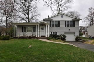 94  N Glenwood Rd  , Fanwood Boro, NJ 07023 (MLS #3212335) :: The Dekanski Home Selling Team