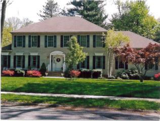 11  Timber Dr  , Berkeley Heights Twp., NJ 07922 (MLS #3212719) :: The Dekanski Home Selling Team