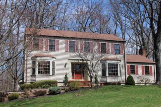 9  Spice Hill Rd  , Berkeley Heights Twp., NJ 07922 (MLS #3213316) :: The Dekanski Home Selling Team