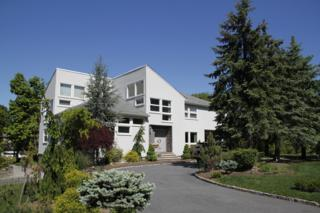 21  Sunset Ct  , Montville Twp., NJ 07045 (MLS #3214642) :: The Dekanski Home Selling Team
