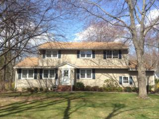 20  Rutgers Ave  , Berkeley Heights Twp., NJ 07922 (MLS #3214695) :: The Dekanski Home Selling Team