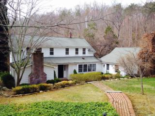 20  Hacklebarney Rd  , Chester Twp., NJ 07930 (MLS #3214826) :: The Dekanski Home Selling Team