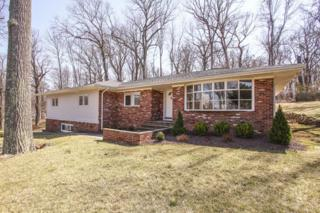 14  Mea Dr  , Berkeley Heights Twp., NJ 07922 (MLS #3215222) :: The Dekanski Home Selling Team