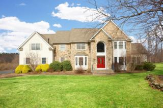 13  Highland Drive  , Chester Twp., NJ 07930 (MLS #3215638) :: The Dekanski Home Selling Team