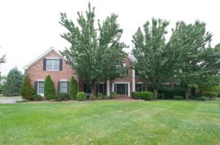 25  Blue Heron Way  , Montgomery Twp., NJ 08558 (MLS #3215714) :: The Dekanski Home Selling Team