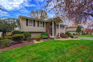43  Amelia Dr  , Clark Twp., NJ 07066 (MLS #3216764) :: The Dekanski Home Selling Team