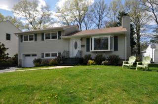 19  Poplar Pl  , Fanwood Boro, NJ 07023 (MLS #3217880) :: The Dekanski Home Selling Team