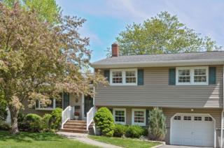 146  River Bend Rd  , Berkeley Heights Twp., NJ 07922 (MLS #3222130) :: The Dekanski Home Selling Team