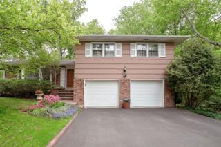 87  Saw Mill Drive  , Berkeley Heights Twp., NJ 07922 (MLS #3223203) :: The Dekanski Home Selling Team
