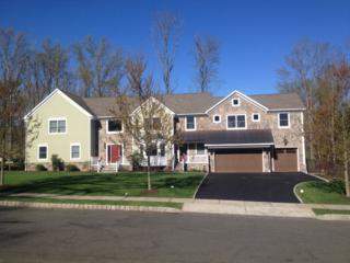 1  Treetop Ct  , Berkeley Heights Twp., NJ 07922 (MLS #3128738) :: The Dekanski Home Selling Team