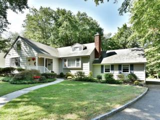 145  Rutgers Ave  , Berkeley Heights Twp., NJ 07922 (MLS #3171804) :: The Dekanski Home Selling Team