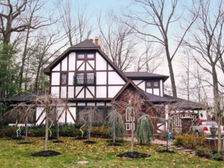 29  Greaves Pl  , Cranford Twp., NJ 07016 (MLS #3179967) :: The Dekanski Home Selling Team