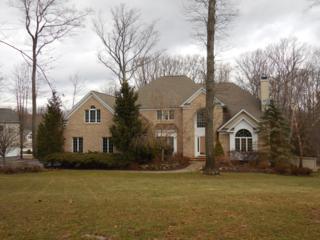 15  Edgewood Ter  , Randolph Twp., NJ 07869 (MLS #3193445) :: The Dekanski Home Selling Team