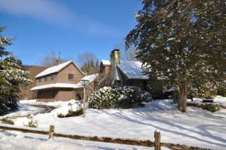 100  Valley Rd  , Mansfield Twp., NJ 07863 (MLS #3199892) :: The Dekanski Home Selling Team