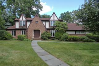 20  Overhill Way  , Berkeley Heights Twp., NJ 07922 (MLS #3160393) :: The Dekanski Home Selling Team
