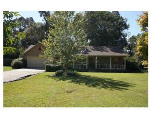 1386  Old Highway 26  , Perkinston, MS 39573 (MLS #282301) :: Keller Williams Realty MS Gulf Coast