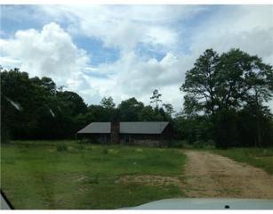 East Wire Road Road  , Wiggins, MS 39577 (MLS #282370) :: Keller Williams Realty MS Gulf Coast