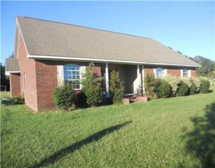 7345  Amberwood Lane  , Lucedale, MS 39452 (MLS #282440) :: Keller Williams Realty MS Gulf Coast