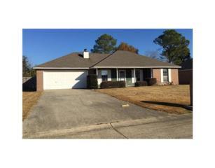 15066  Sagewood Street  , Gulfport, MS 39503 (MLS #283819) :: Keller Williams Realty MS Gulf Coast